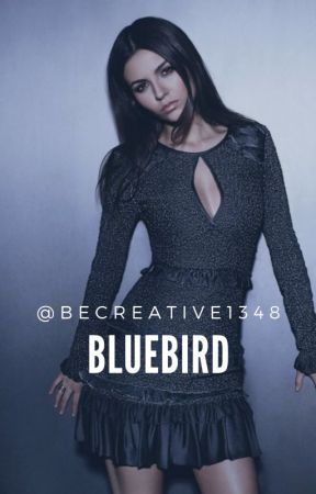 Bluebird |•Black Panther•| by becreative1348