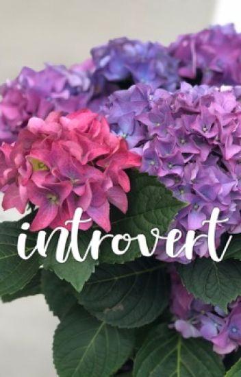 introvert :: lashton au