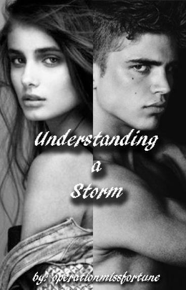 Understanding a Storm