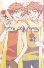 What Am I To U (Hikaoru) +18 by YaoiLover1929