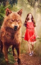 The Story of the Half Vampire and the Werewolf by kylie48