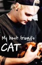 My best friend's cat // Mashton by PanicCliffordx