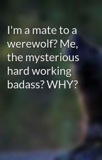 I'm a mate to a werewolf? Me, the mysterious hard working badass? WHY? by musicwolf19