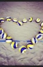 Volleyball by Muszuu