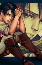 *^* levi X Leser *^* by SteffiLk