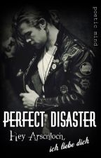 Perfect Disaster - Hey Arschloch, ich liebe dich by PoeticMind87