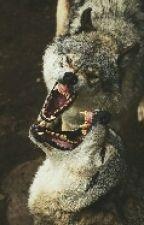 Koer võimetetta by j2nku22
