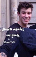 shawn mendes imagines by dolanaesthetic