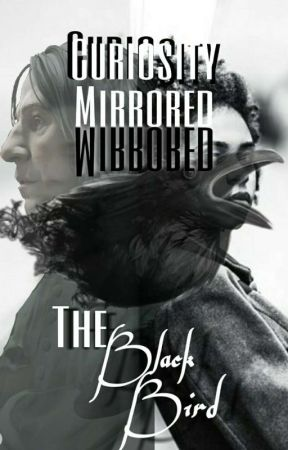 Curiosity Mirrored the Black Bird. S.S (Book two) by Wizardly_Markiplier
