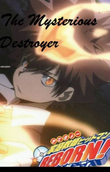 The Mysterious Destroyer (KHR Fanfic)