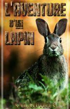 L'aventure D'un Lapin by Yuiii3