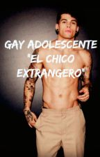 Gay Adolescente: El chico extranjero by Mrsami
