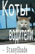 Коты Водители. by StasyShade