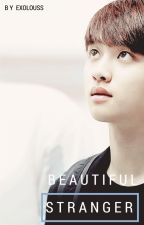 Beautiful Stranger (Kaisoo) by EXOLOUSS