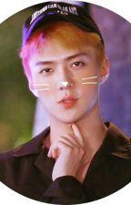 [ Fictiona Girl - Sehun ] | EXO | MY SUNSHINE by hyemin123