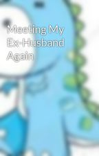 Meeting My Ex-Husband Again by HappyKid1011
