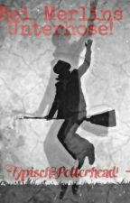 Bei Merlins Unterhose ! - Typisch Potterhead! by London975