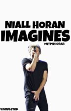 Niall Horan Imagines by qtpiehoran