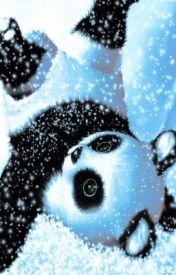 pandas by MirandaWright