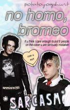 No Homo, Bromeo (Frerard, Petekey, Ryden) by raughy