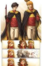 Recueil Harry Potter (OS) by heylley