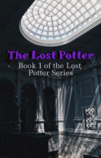 The Lost Potter by greekfreakkth