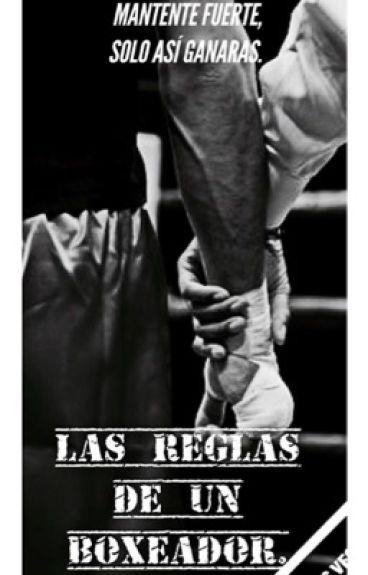 Reglas de un boxeador