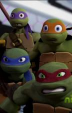 Tmnt x reader one shots! (Requests open!) by ThatBloodyGirl
