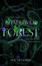 Shadowed Forest by LadyKnightMeg