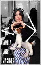 Camila Cabello Imagines by cloudycamila