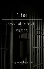 The Special Inmate (male x male) by chasingstorms