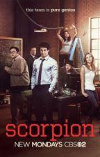 Scorpion: A Fanfiction by scorpion_waige_17