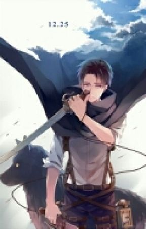I Am A Fighter! (Levi X Reader) by amberwolf89