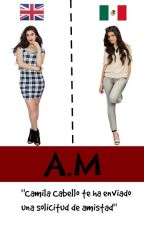 A.M [Camren] by Laurinahxheaven