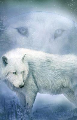 Pure white werewolf - photo#1