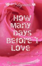How Many Days Before I Love You by Mainemdcm