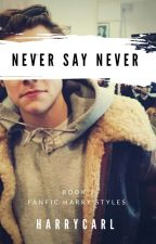 Never Say Never ●Book 2●[HS]   by HarryCarl
