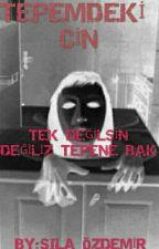 Tepemdeki Cin by azduman123