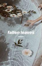 fallen leaves  by vroomvroom-