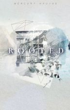 Rooted by heliodor