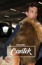 cantek ; l.s (ON HOLD) by pstvplants