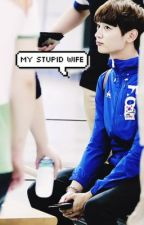 My Stupid Wife [COMPLETED] [Revising] by -ohorat