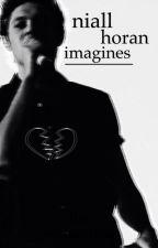 Niall Horan Imagines by nouisnudes