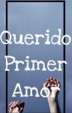 Querido Primer Amor by kfawkward