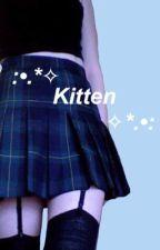 kitten ;, mgc by daddymg