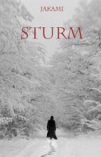Sturm by Jakami