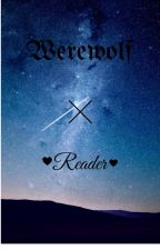 werewolf x reader by angelbeast65