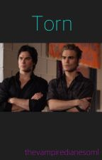 Torn // Stefan and Damon by thevampirediariesoml