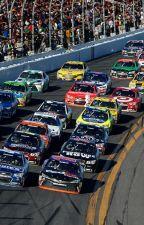 NASCAR Driver Preferences by thedoctorsstargirl
