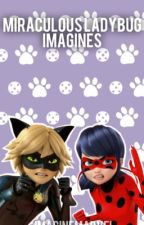 Miraculous Ladybug Imagines by Imaginemarvel